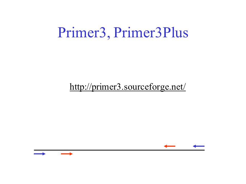 Primer3, Primer3Plus http://primer3.sourceforge.net/