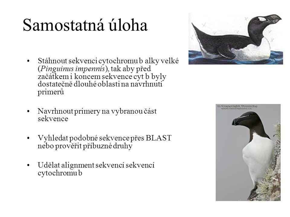 Samostatná úloha Stáhnout sekvenci cytochromu b alky velké (Pinguinus impennis), tak aby před začátkem i koncem sekvence cyt b byly dostatečně dlouhé oblasti na navrhnutí primerů Navrhnout primery na vybranou část sekvence Vyhledat podobné sekvence přes BLAST nebo prověřit příbuzné druhy Udělat alignment sekvencí sekvencí cytochromu b