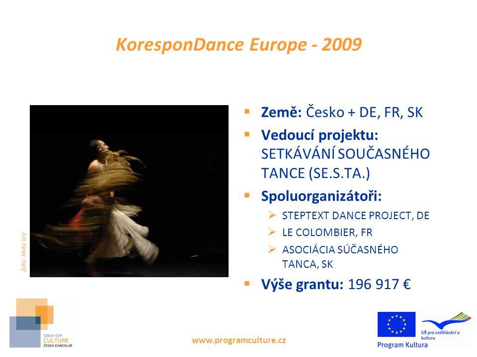 Úspěšné žádosti, výzva 2011 – dle oboru www.programculture.cz