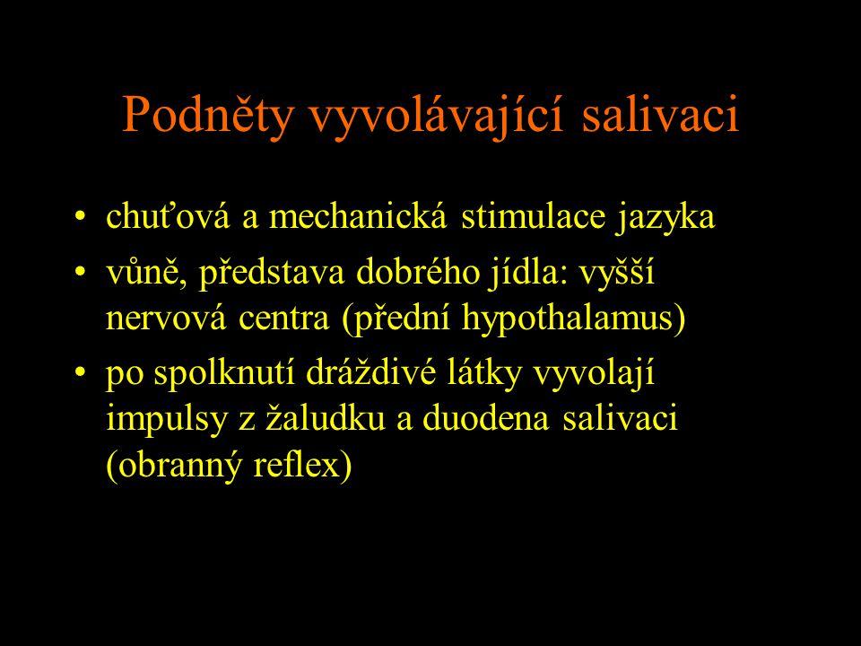 Podněty vyvolávající salivaci chuťová a mechanická stimulace jazyka vůně, představa dobrého jídla: vyšší nervová centra (přední hypothalamus) po spolk