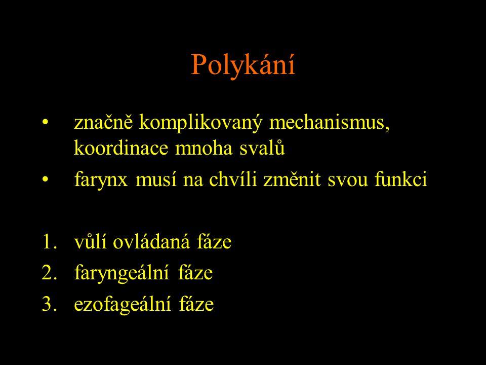Polykání značně komplikovaný mechanismus, koordinace mnoha svalů farynx musí na chvíli změnit svou funkci 1.vůlí ovládaná fáze 2.faryngeální fáze 3.ez