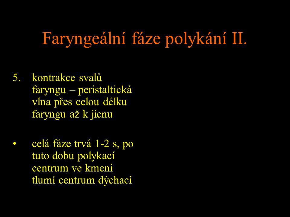 Faryngeální fáze polykání II. 5.kontrakce svalů faryngu – peristaltická vlna přes celou délku faryngu až k jícnu celá fáze trvá 1-2 s, po tuto dobu po