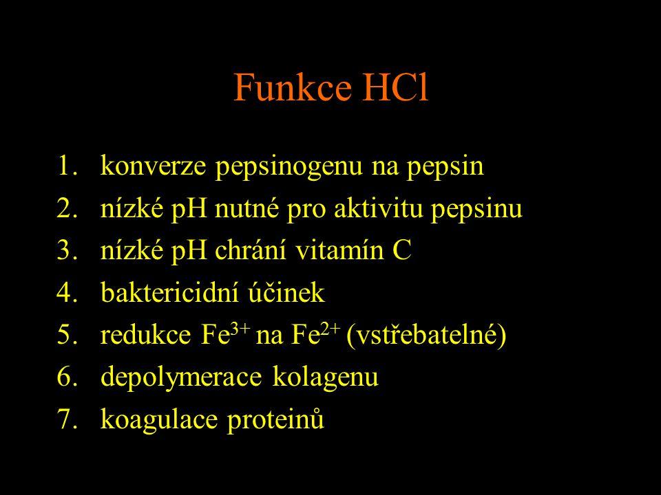 Funkce HCl 1.konverze pepsinogenu na pepsin 2.nízké pH nutné pro aktivitu pepsinu 3.nízké pH chrání vitamín C 4.baktericidní účinek 5.redukce Fe 3+ na