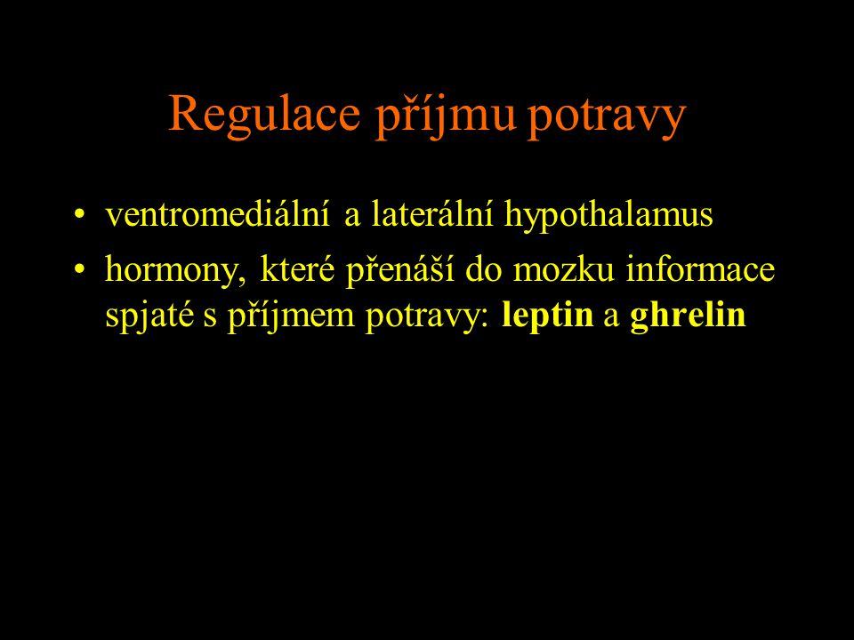 Regulace příjmu potravy ventromediální a laterální hypothalamus hormony, které přenáší do mozku informace spjaté s příjmem potravy: leptin a ghrelin