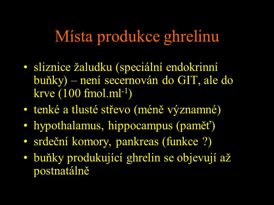 Místa produkce ghrelinu sliznice žaludku (speciální endokrinní buňky) – není secernován do GIT, ale do krve (100 fmol.ml -1 ) tenké a tlusté střevo (m