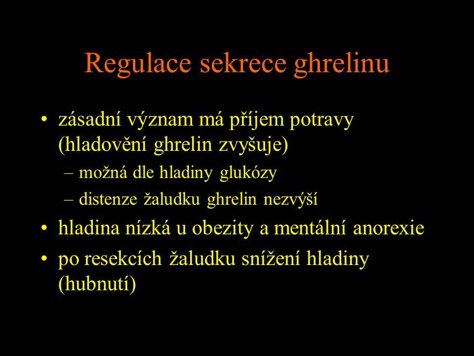 Regulace sekrece ghrelinu zásadní význam má příjem potravy (hladovění ghrelin zvyšuje) –možná dle hladiny glukózy –distenze žaludku ghrelin nezvýší hl