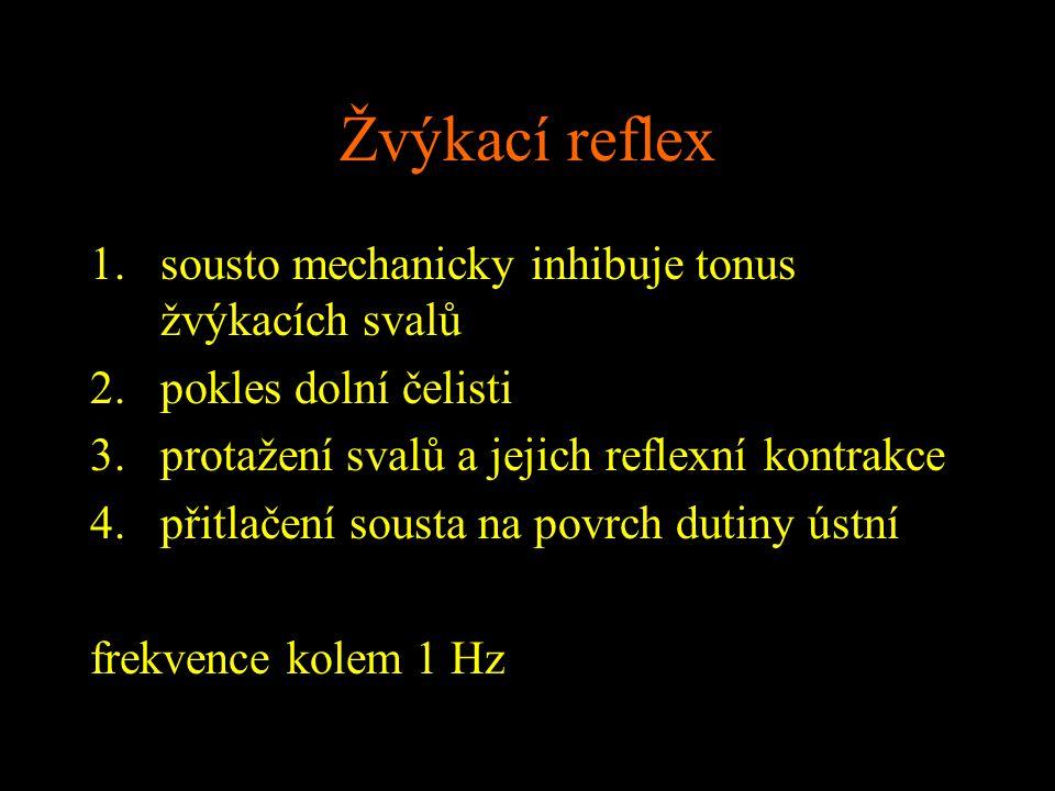 Žvýkací reflex 1.sousto mechanicky inhibuje tonus žvýkacích svalů 2.pokles dolní čelisti 3.protažení svalů a jejich reflexní kontrakce 4.přitlačení so