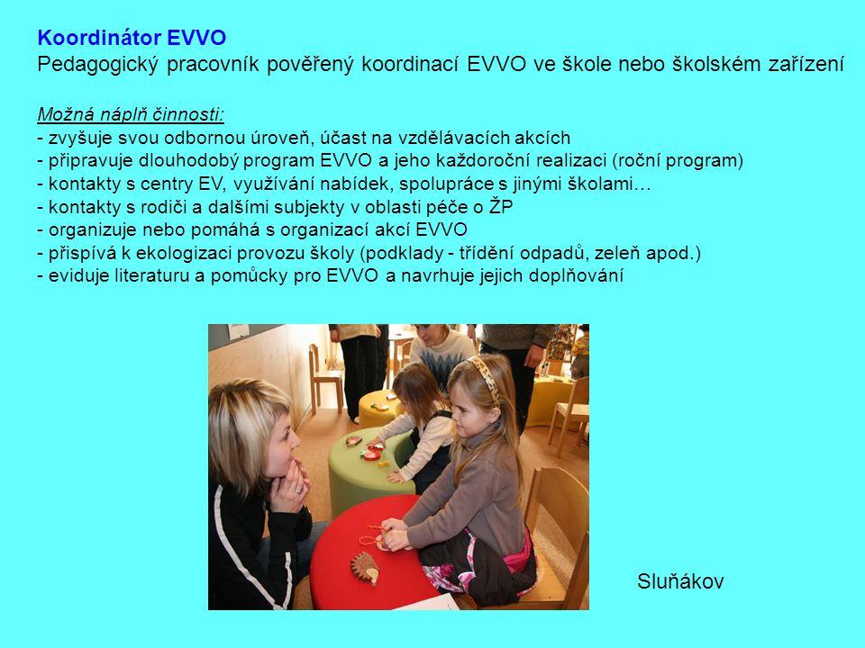 Koordinátor EVVO Pedagogický pracovník pověřený koordinací EVVO ve škole nebo školském zařízení Možná náplň činnosti: - zvyšuje svou odbornou úroveň,