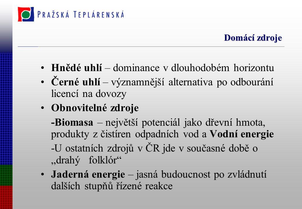 """Domácí zdroje Hnědé uhlí – dominance v dlouhodobém horizontu Černé uhlí – významnější alternativa po odbourání licencí na dovozy Obnovitelné zdroje -Biomasa – největší potenciál jako dřevní hmota, produkty z čistíren odpadních vod a Vodní energie -U ostatních zdrojů v ČR jde v současné době o """"drahý folklór Jaderná energie – jasná budoucnost po zvládnutí dalších stupňů řízené reakce"""