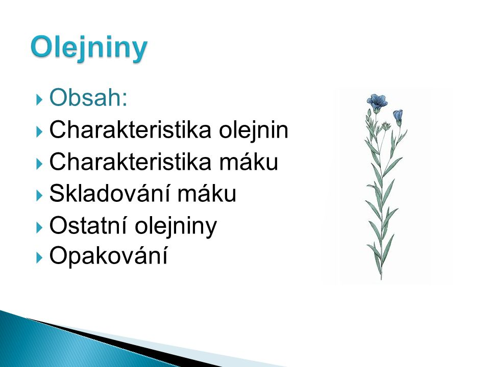  Obsah:  Charakteristika olejnin  Charakteristika máku  Skladování máku  Ostatní olejniny  Opakování