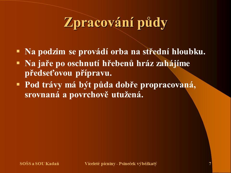 SOŠS a SOU KadaňVíceleté pícniny - Psineček výběžkatý7 Zpracování půdy  Na podzim se provádí orba na střední hloubku.