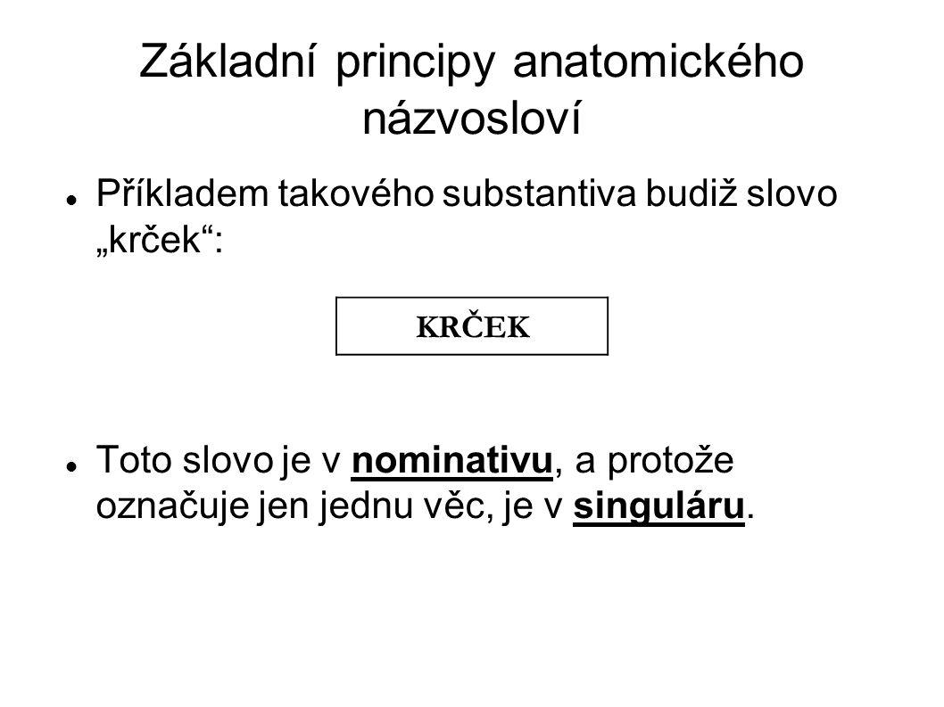 """Základní principy anatomického názvosloví Příkladem takového substantiva budiž slovo """"krček"""": Toto slovo je v nominativu, a protože označuje jen jednu"""
