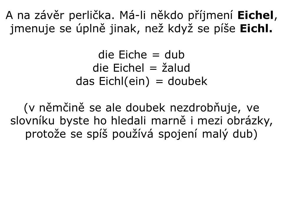 A na závěr perlička. Má-li někdo příjmení Eichel, jmenuje se úplně jinak, než když se píše Eichl.