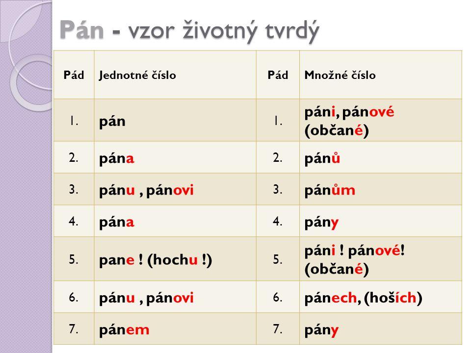 Pán - vzor životný tvrdý PádJednotné čísloPádMnožné číslo 1. pán 1. páni, pánové (občané) 2. pána 2. pánů 3. pánu, pánovi 3. pánům 4. pána 4. pány 5.