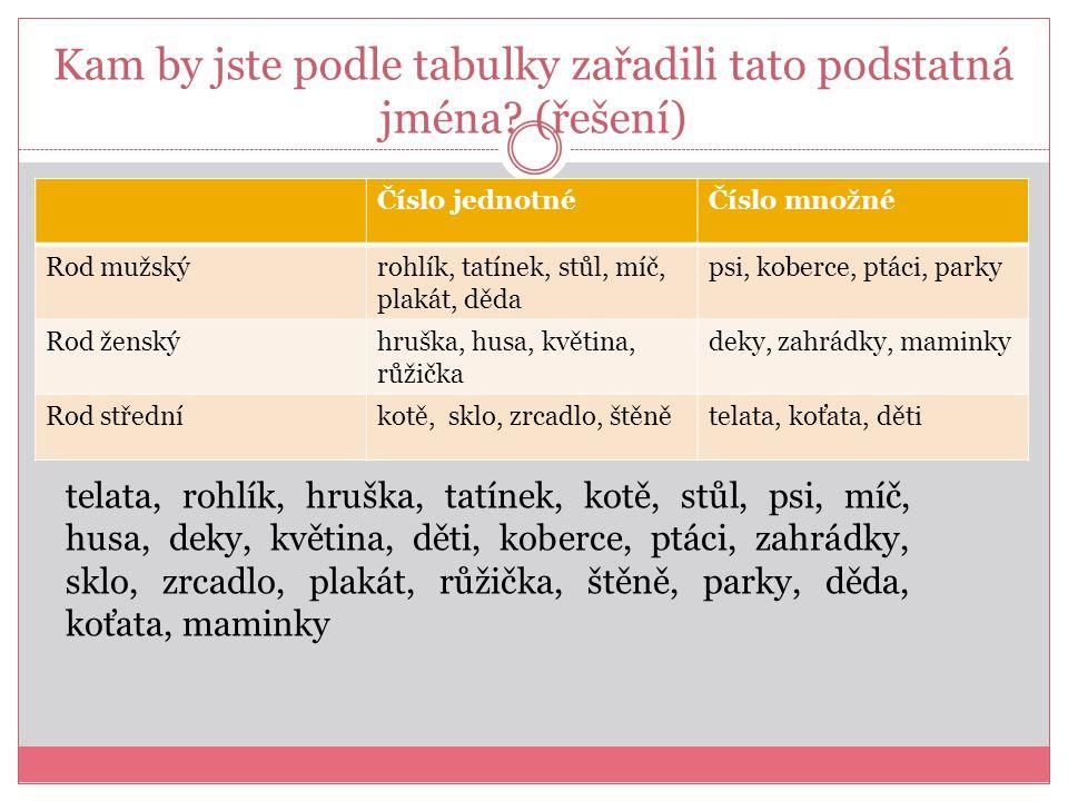 Kam by jste podle tabulky zařadili tato podstatná jména.