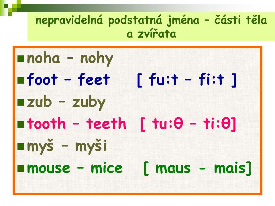nepravidelná podstatná jména – části těla a zvířata noha – nohy foot – feet [ fu:t – fi:t ] zub – zuby tooth – teeth [ tu:θ – ti:θ] myš – myši mouse –