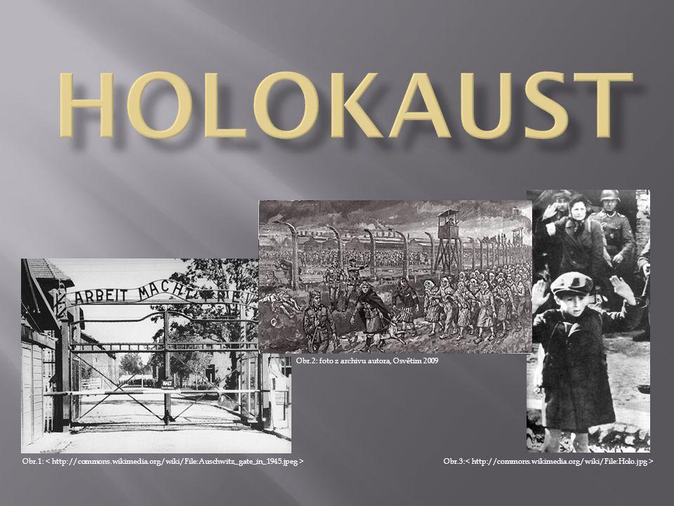 POJEM Holocaust (z řeckého holokauston celopal; holos celý + kaustos spálený), označovaný též jako šoa (hebrejsky neštěstí, zničení) - označení pro systematické a státem provozované pronásledování a hromadné vyvražďování Židů prováděné nacistickým Německem a jeho spojenci během druhé světové války.