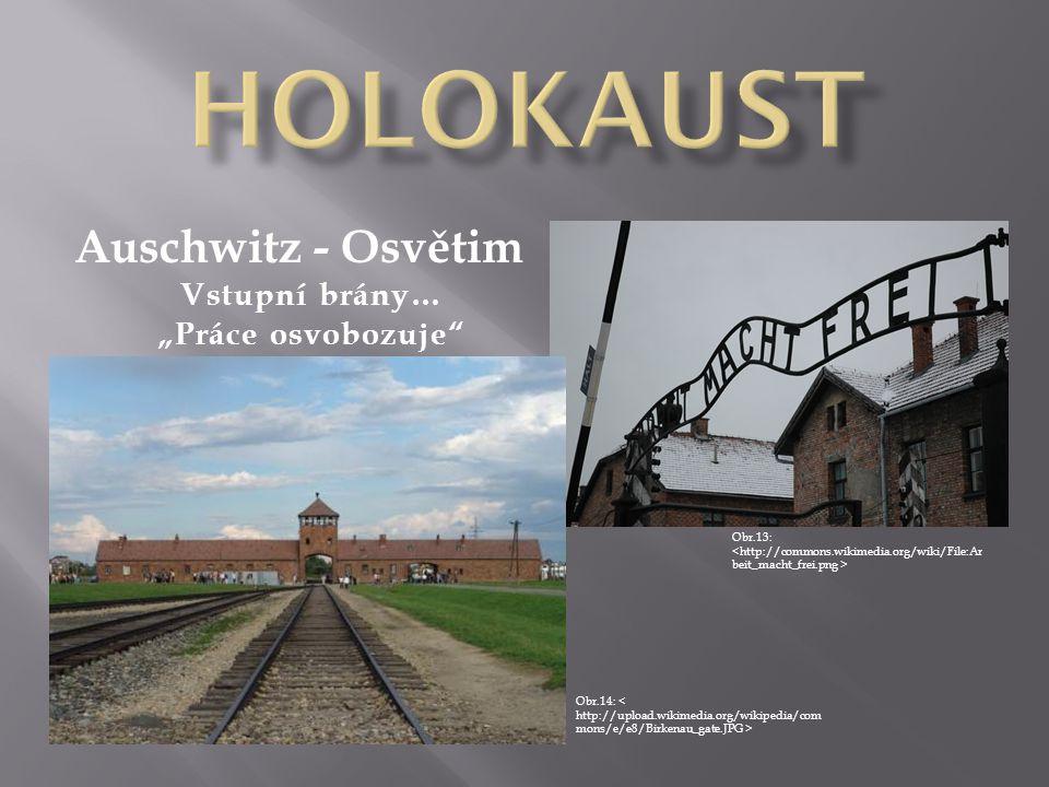 """Auschwitz - Osvětim Obr.13: Obr.14: Vstupní brány… """"Práce osvobozuje"""""""