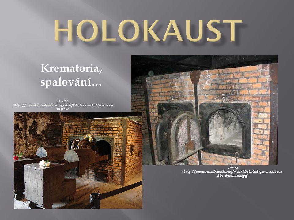Krematoria, spalování… Obr.33 Obr.32: