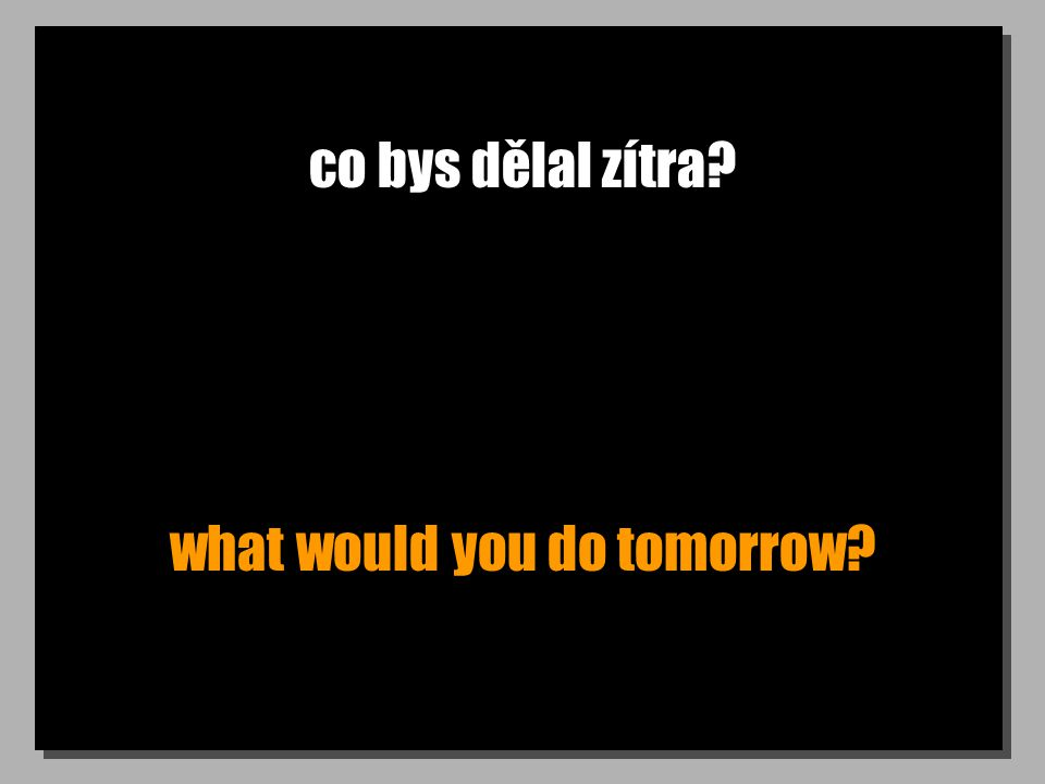 co bys dělal zítra? what would you do tomorrow?