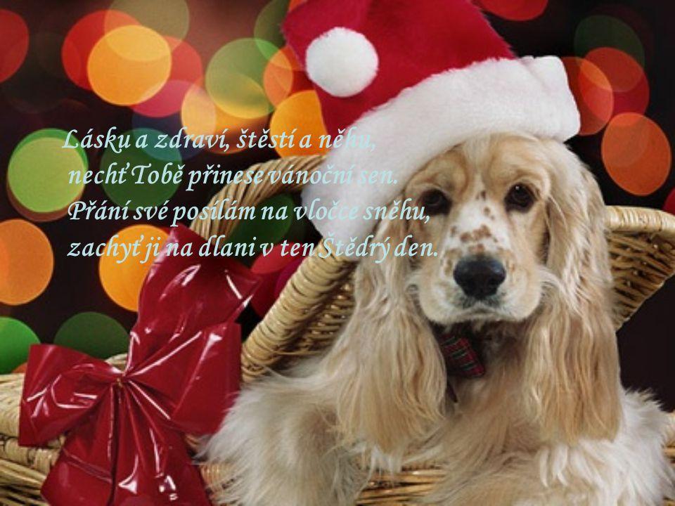 Lásku a zdraví, štěstí a něhu, nechť Tobě přinese vánoční sen. Přání své posílám na vločce sněhu, zachyť ji na dlani v ten Štědrý den.
