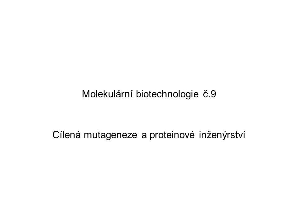 Molekulární biotechnologie č.9 Cílená mutageneze a proteinové inženýrství
