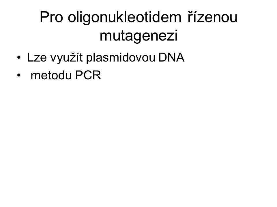 Pro oligonukleotidem řízenou mutagenezi Lze využít plasmidovou DNA metodu PCR