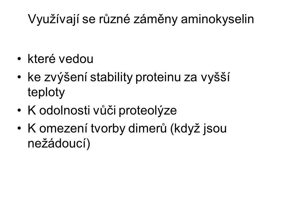 Využívají se různé záměny aminokyselin které vedou ke zvýšení stability proteinu za vyšší teploty K odolnosti vůči proteolýze K omezení tvorby dimerů