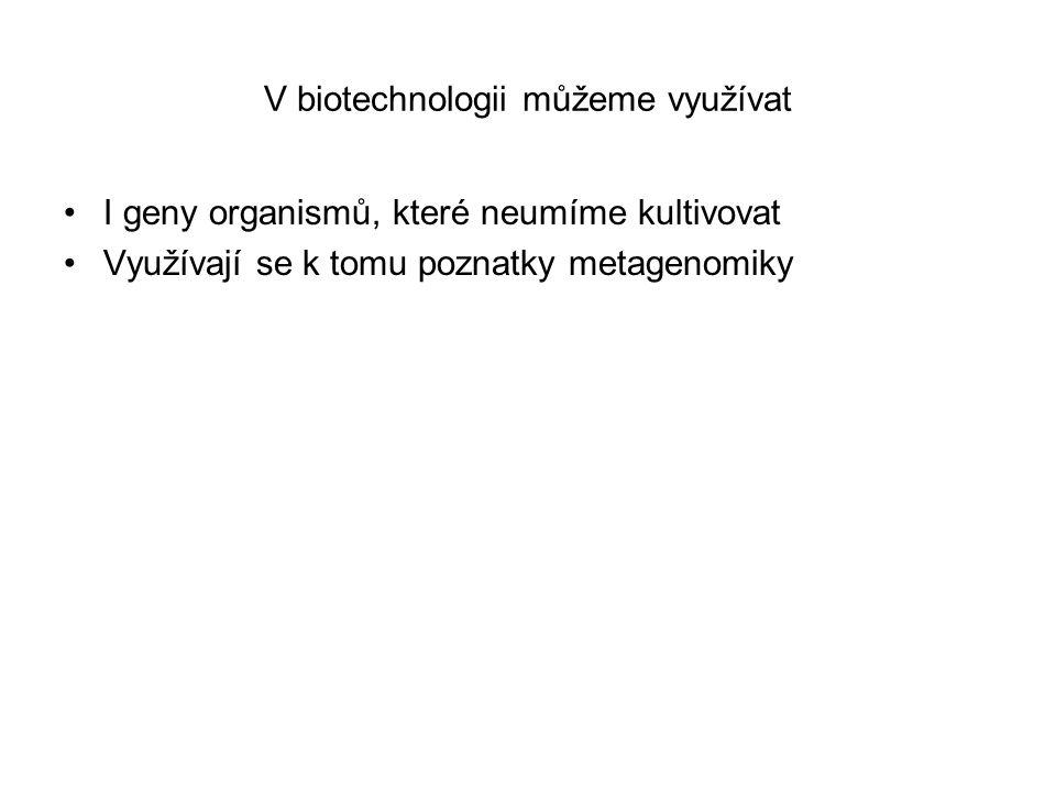 V biotechnologii můžeme využívat I geny organismů, které neumíme kultivovat Využívají se k tomu poznatky metagenomiky