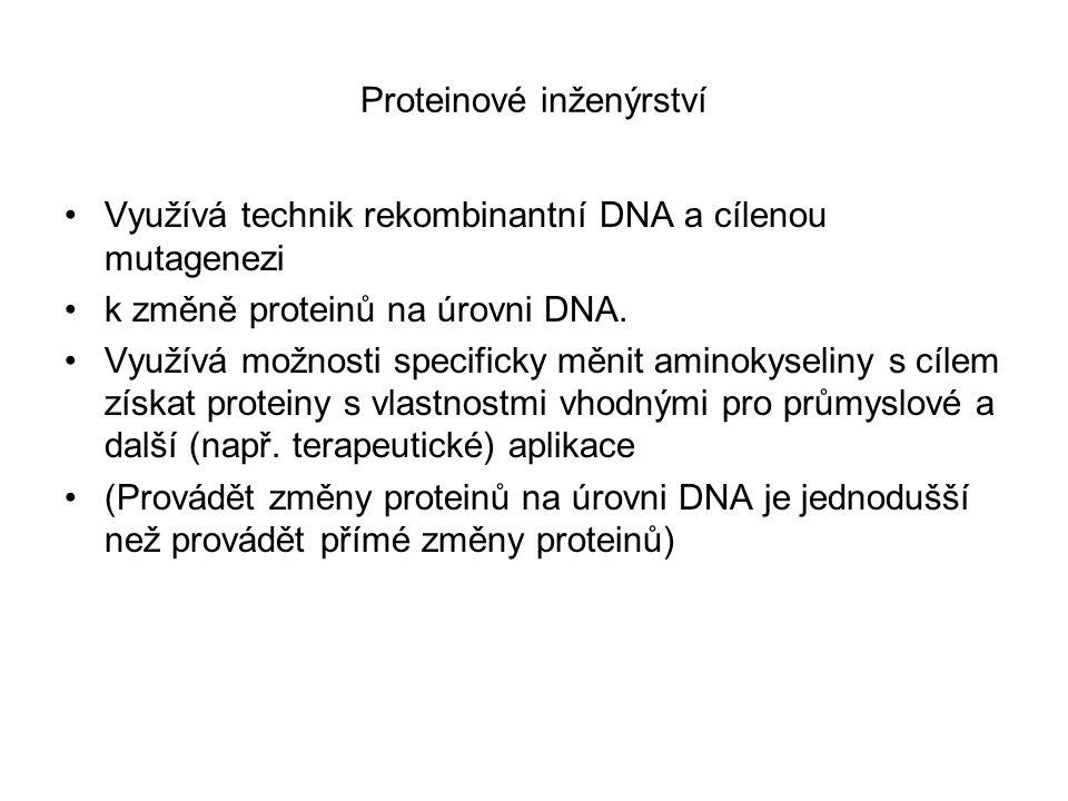 Proteinové inženýrství Využívá technik rekombinantní DNA a cílenou mutagenezi k změně proteinů na úrovni DNA. Využívá možnosti specificky měnit aminok