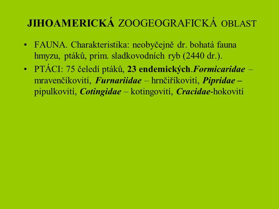 JIHOAMERICKÁ ZOOGEOGRAFICKÁ OBLAST FAUNA. Charakteristika: neobyčejně dr. bohatá fauna hmyzu, ptáků, prim. sladkovodních ryb (2440 dr.). PTÁCI: 75 čel
