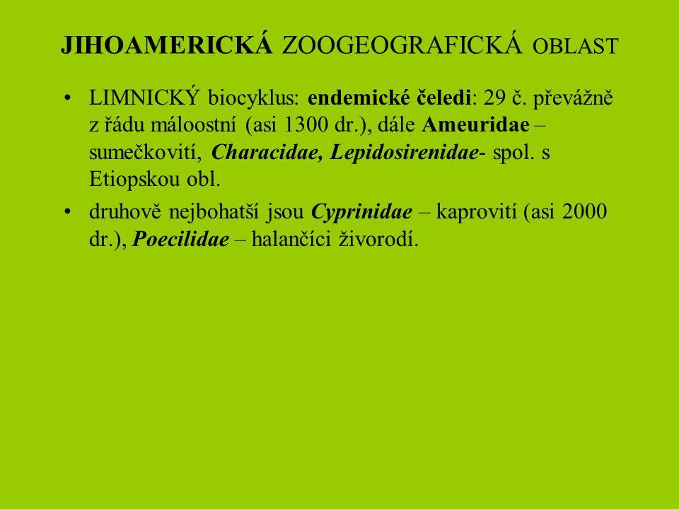 JIHOAMERICKÁ ZOOGEOGRAFICKÁ OBLAST LIMNICKÝ biocyklus: endemické čeledi: 29 č. převážně z řádu máloostní (asi 1300 dr.), dále Ameuridae – sumečkovití,