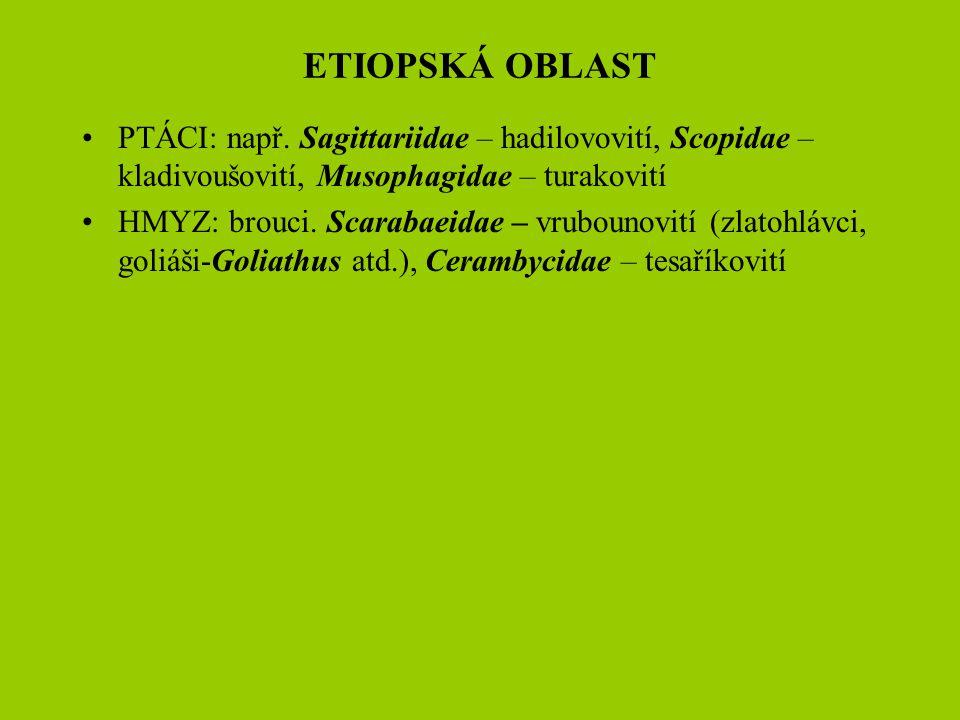PTÁCI: např. Sagittariidae – hadilovovití, Scopidae – kladivoušovití, Musophagidae – turakovití HMYZ: brouci. Scarabaeidae – vrubounovití (zlatohlávci