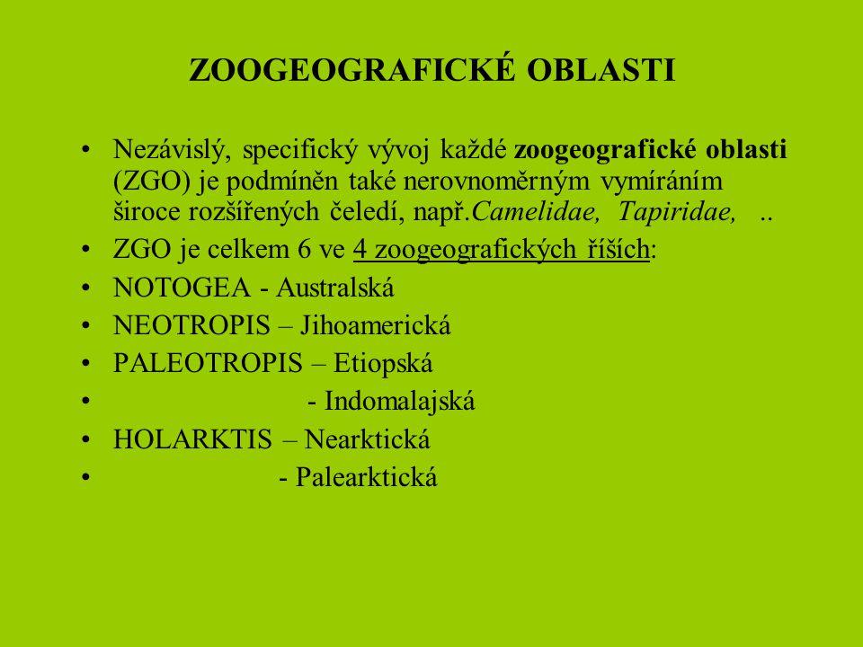ZOOGEOGRAFICKÉ OBLASTI Nezávislý, specifický vývoj každé zoogeografické oblasti (ZGO) je podmíněn také nerovnoměrným vymíráním široce rozšířených čele