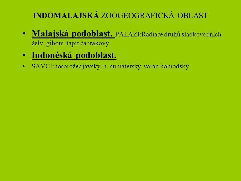 INDOMALAJSKÁ ZOOGEOGRAFICKÁ OBLAST Malajská podoblast. PALAZI:Radiace druhů sladkovodních želv, giboni, tapír čabrakový Indonéská podoblast. SAVCI:nos