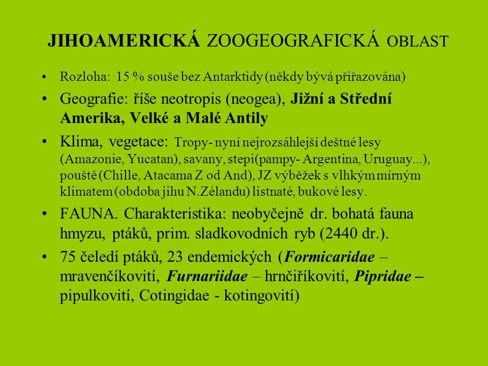 Euroasijská zoogeografická oblast PŘÍKLADY AREÁLŮ Tarbíkovití Dipodidae se dělído 10(11) ve 4 podčeledích a 3O druzích ROZŠÍŘENÍ: severní Afrika, Asie a JV Evropa.(Dněpr, Kama, Oka, Malá Asie, středoasijská horstva, SV Mongolsko, JV Čina, Zabajkalsko) Tarbíkovití jsou charakterističtí hlodavci adaptovaní na velmi aridní podmínky (pouště, polopouště, stepi), např.