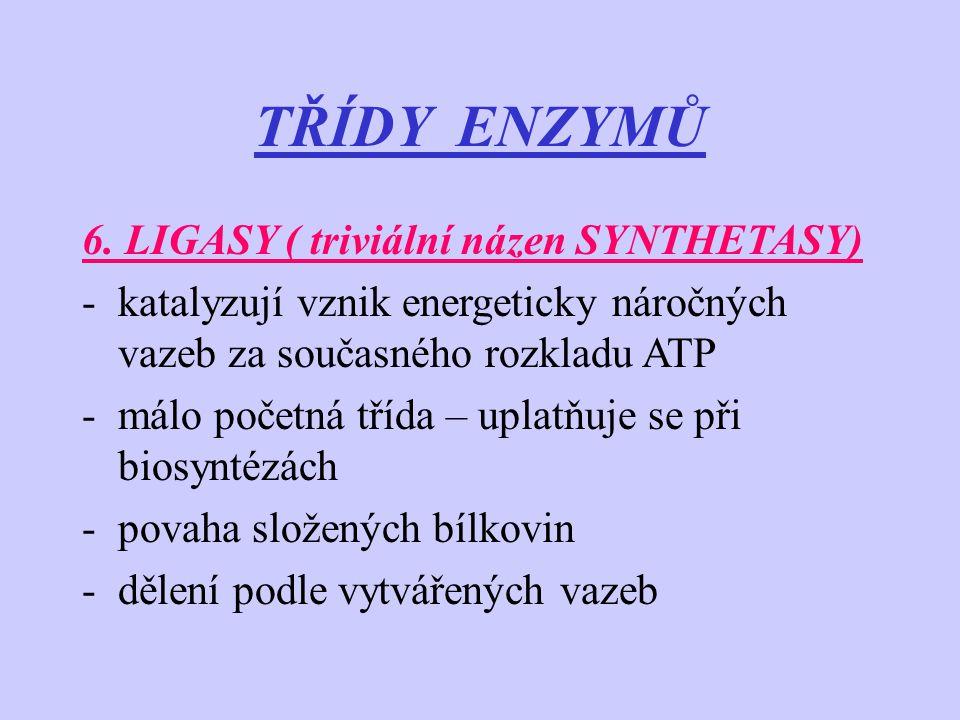 TŘÍDY ENZYMŮ 6. LIGASY ( triviální názen SYNTHETASY) -katalyzují vznik energeticky náročných vazeb za současného rozkladu ATP -málo početná třída – up
