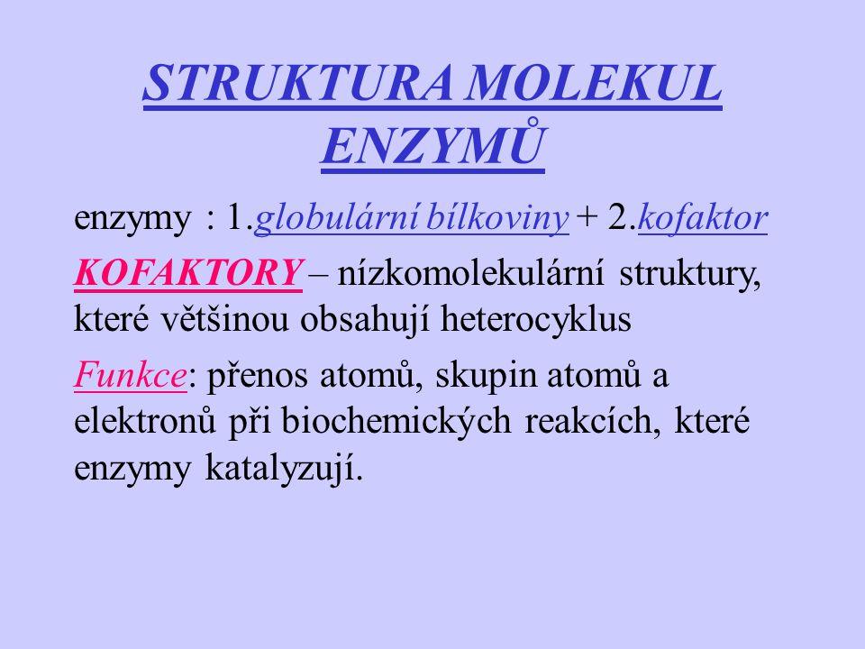 STRUKTURA MOLEKUL ENZYMŮ enzymy : 1.globulární bílkoviny + 2.kofaktor KOFAKTORY – nízkomolekulární struktury, které většinou obsahují heterocyklus Fun
