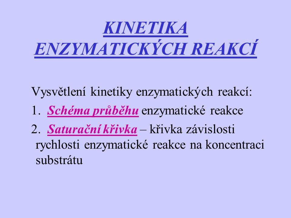 KINETIKA ENZYMATICKÝCH REAKCÍ Vysvětlení kinetiky enzymatických reakcí: 1. Schéma průběhu enzymatické reakce 2. Saturační křivka – křivka závislosti r