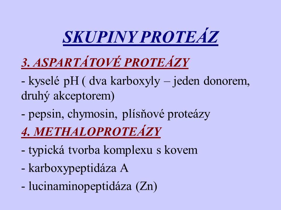 SKUPINY PROTEÁZ 3. ASPARTÁTOVÉ PROTEÁZY - kyselé pH ( dva karboxyly – jeden donorem, druhý akceptorem) - pepsin, chymosin, plísňové proteázy 4. METHAL
