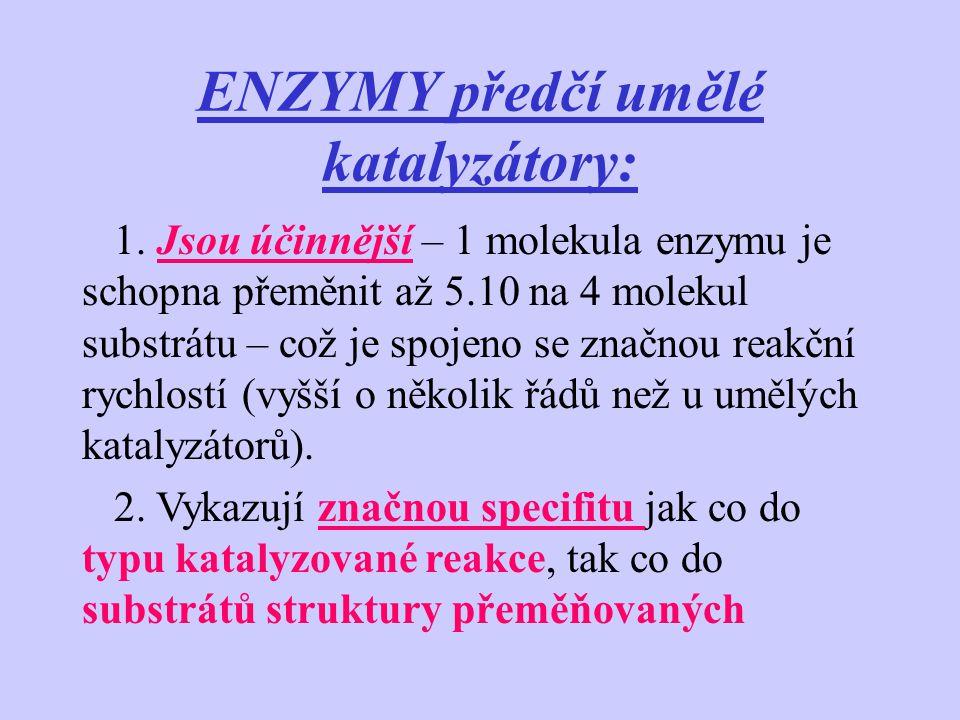 ENZYMY předčí umělé katalyzátory: 1. Jsou účinnější – 1 molekula enzymu je schopna přeměnit až 5.10 na 4 molekul substrátu – což je spojeno se značnou