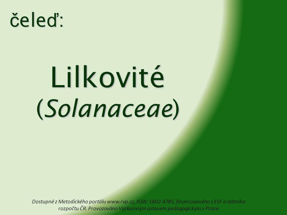 Lilkovité (Solanaceae) č ele ď : Dostupné z Metodického portálu www.rvp.cz, ISSN: 1802-4785, financovaného z ESF a státního rozpočtu ČR. Provozováno V