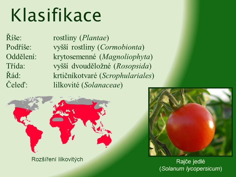 Klasifikace Říše:rostliny (Plantae) Podříše:vyšší rostliny (Cormobionta) Oddělení:krytosemenné (Magnoliophyta) Třída:vyšší dvouděložné (Rosopsida) Řád
