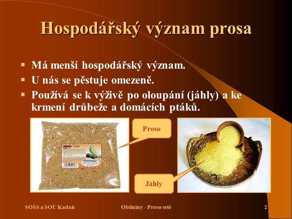 SOŠS a SOU KadaňObilniny - Proso seté3 Biologická charakteristika prosa  Proso je teplomilná rostlina.