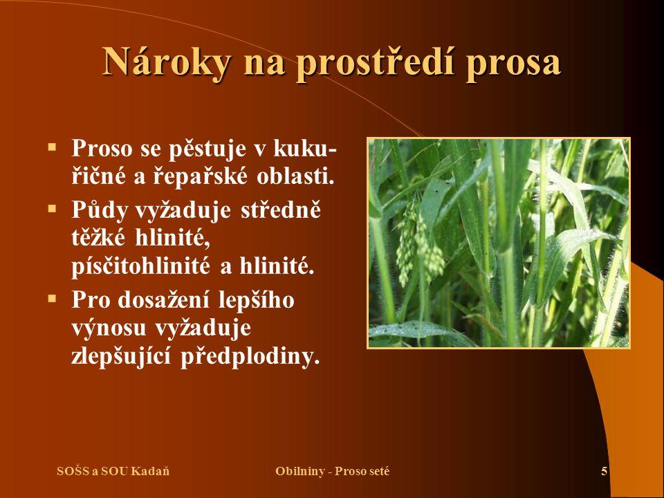 SOŠS a SOU KadaňObilniny - Proso seté5 Nároky na prostředí prosa  Proso se pěstuje v kuku- řičné a řepařské oblasti.  Půdy vyžaduje středně těžké hl