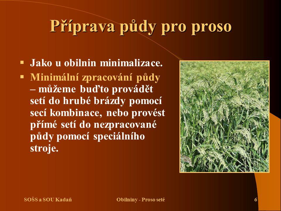 SOŠS a SOU KadaňObilniny - Proso seté6 Příprava půdy pro proso  Jako u obilnin minimalizace.  Minimální zpracování půdy – můžeme buďto provádět setí