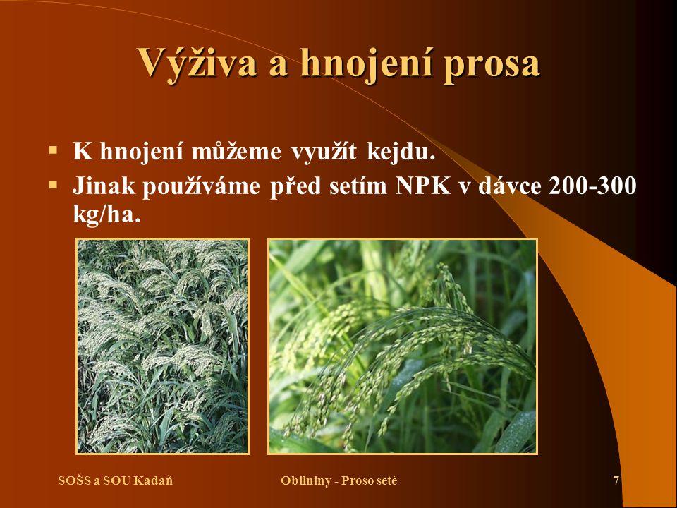 SOŠS a SOU KadaňObilniny - Proso seté7 Výživa a hnojení prosa  K hnojení můžeme využít kejdu.  Jinak používáme před setím NPK v dávce 200-300 kg/ha.