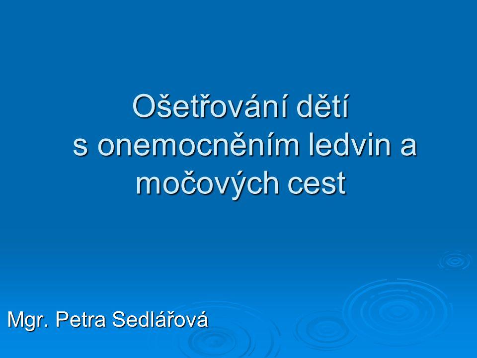 Ošetřování dětí s onemocněním ledvin a močových cest Mgr. Petra Sedlářová