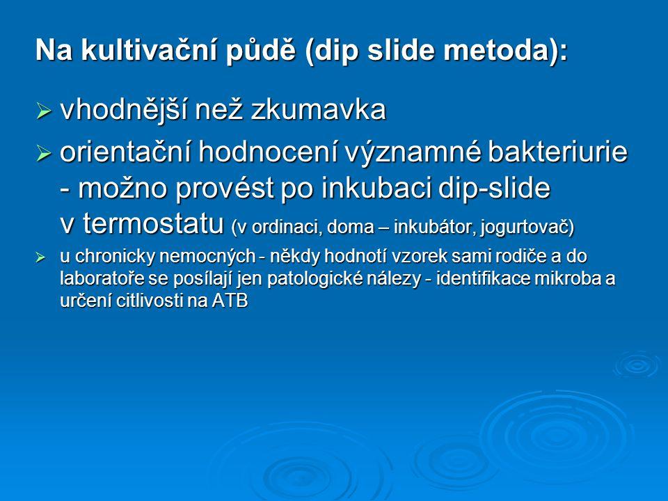 Na kultivační půdě (dip slide metoda):  vhodnější než zkumavka  orientační hodnocení významné bakteriurie - možno provést po inkubaci dip-slide v te