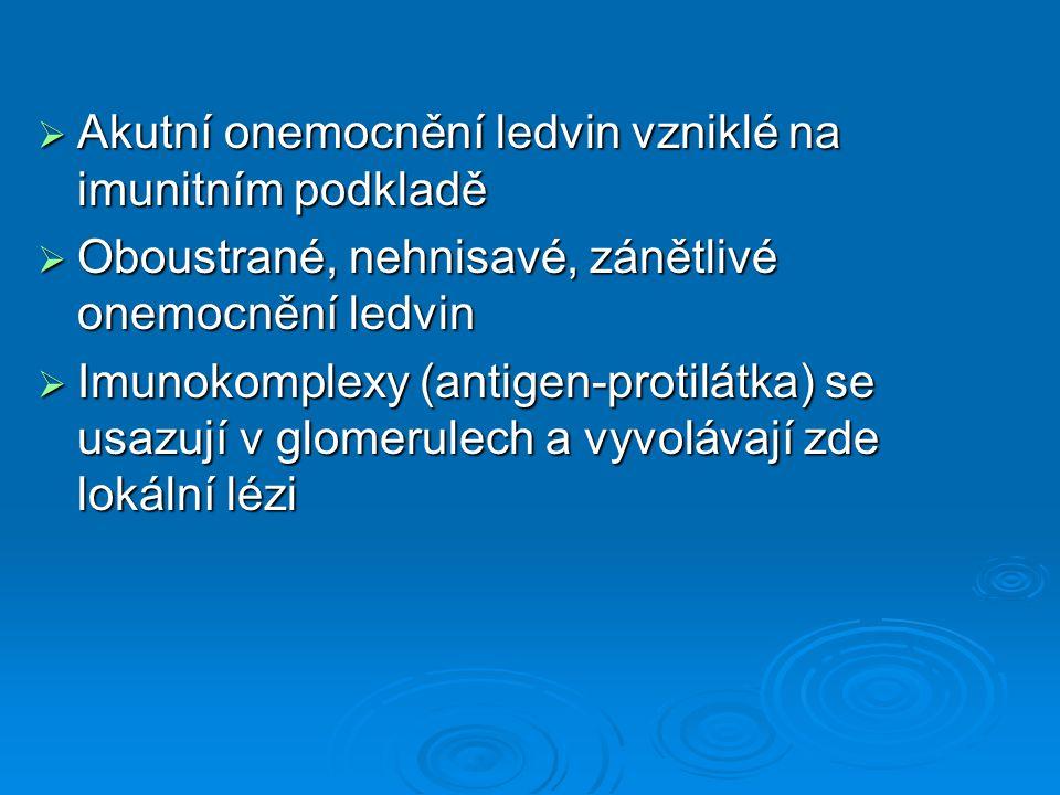  Akutní onemocnění ledvin vzniklé na imunitním podkladě  Oboustrané, nehnisavé, zánětlivé onemocnění ledvin  Imunokomplexy (antigen-protilátka) se